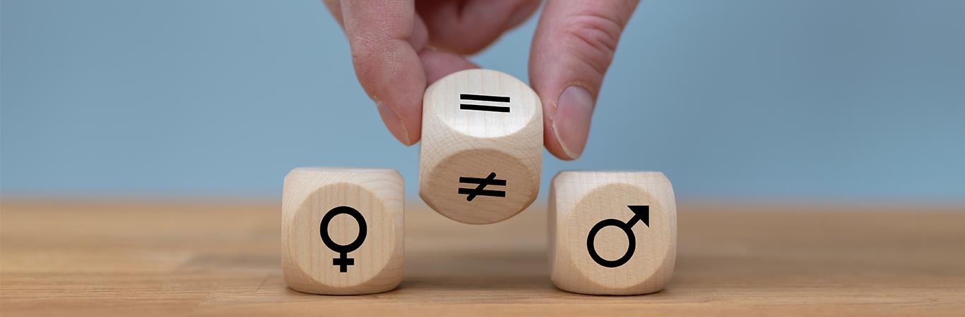 Plan de Igualdad Detectib